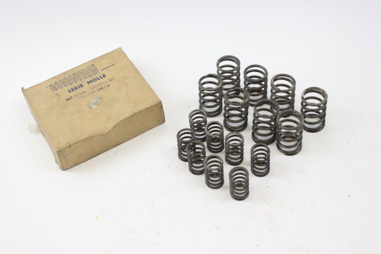 engine valves springs set